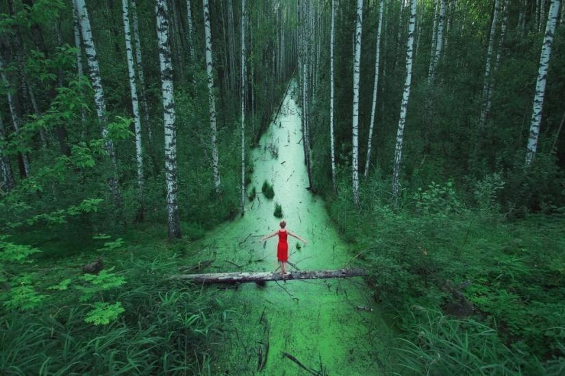bosque te espera.jpg